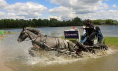 Video I Power Horse Competition Duiven